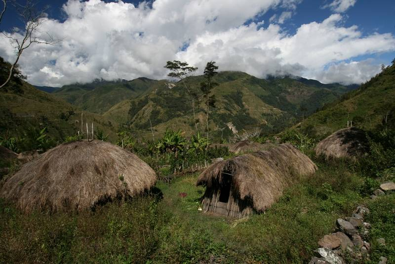 Huts in the Baliem Valley